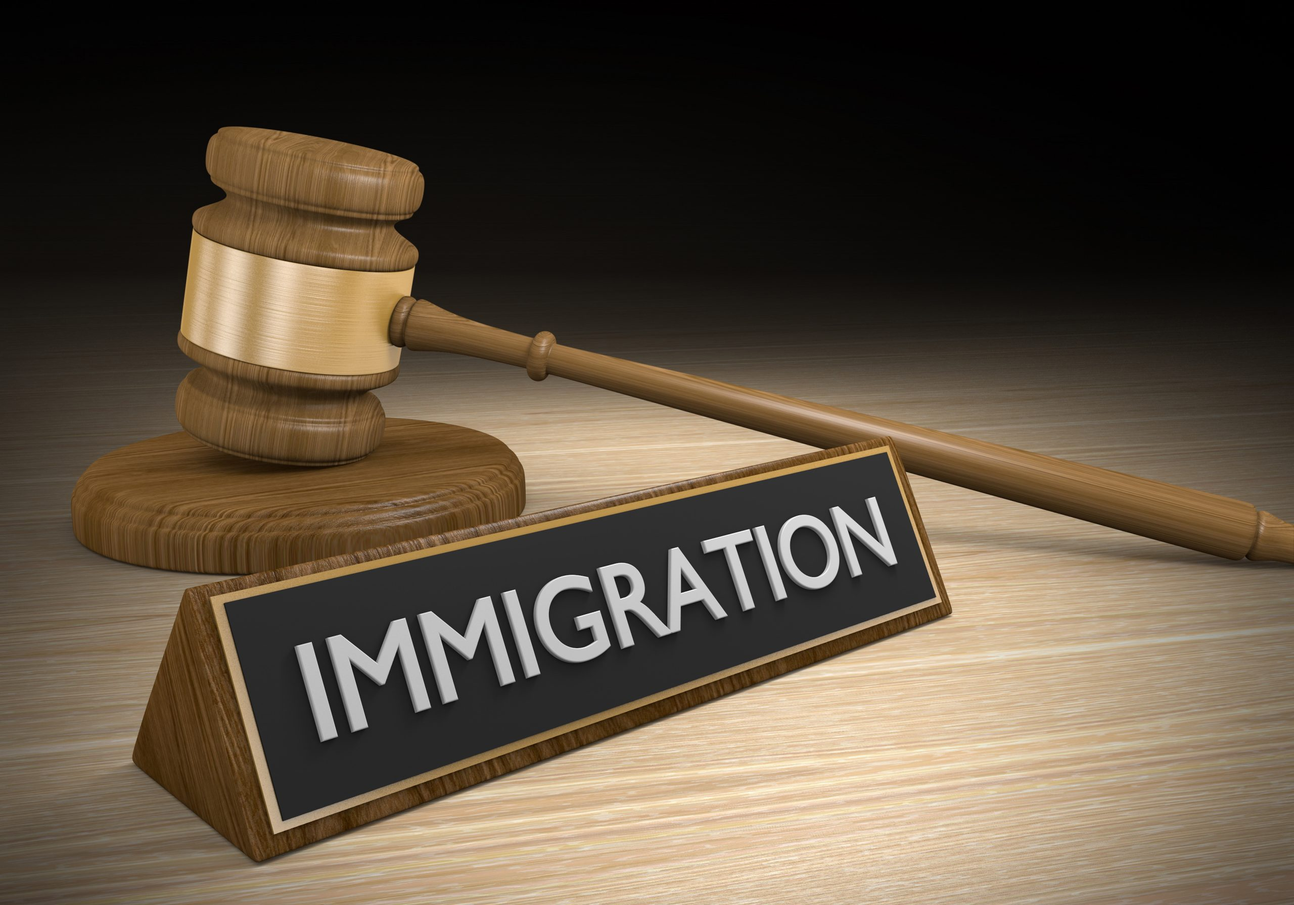 Illegal immigration reform and law policy